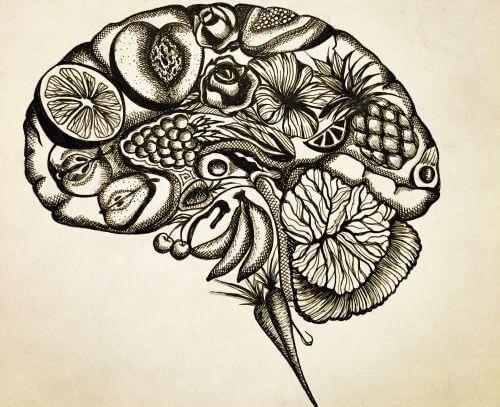 ajatukset hedelmäaivoissa