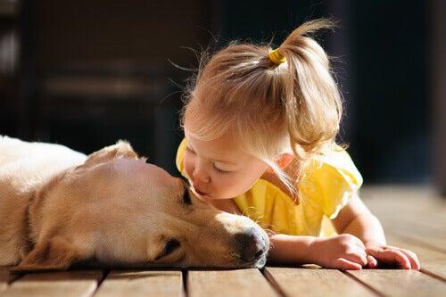 tyttö ja koira