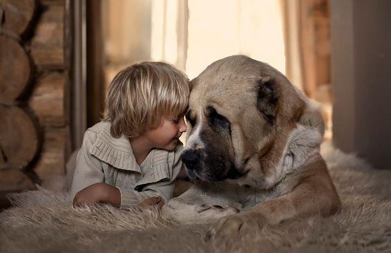 poika ja lemmikki
