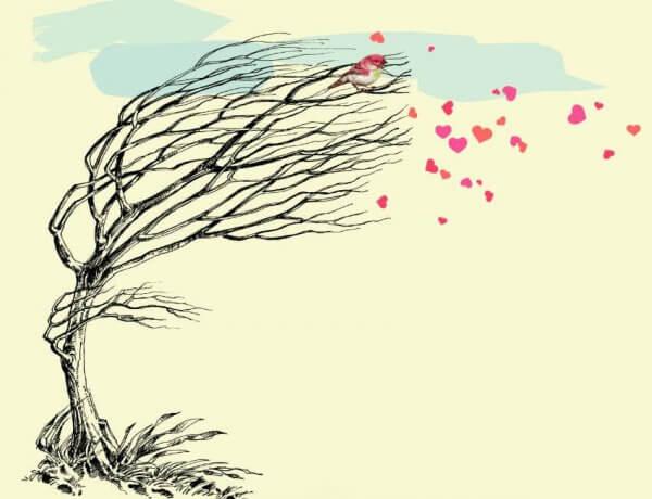 puu ja tuuli ja sydämet