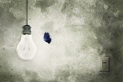 lamppu ja perhonen