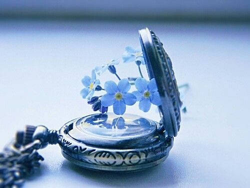 kukkia kellossa