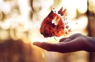 lehdestä lähtee perhonen
