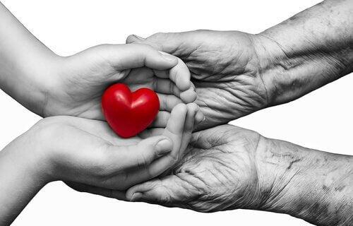 sydän pienissä käsissä