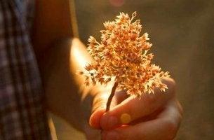 kukka kädessä