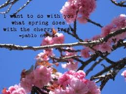 keväiset kukat