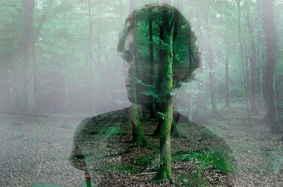 ihmisen kuva metsässä
