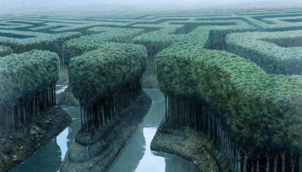 Joki ja puita
