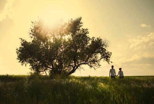 pariskunta ja puu
