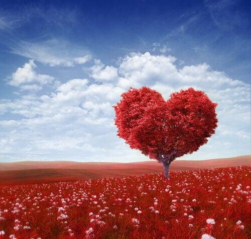 Sydämen muotoinen puu
