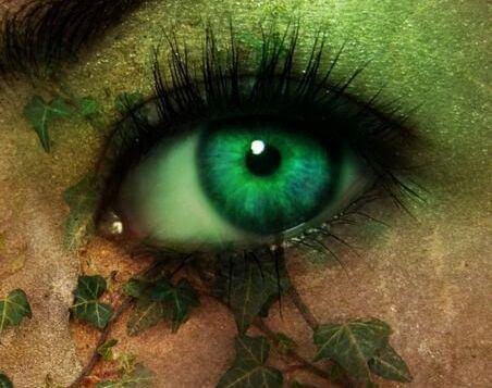 silmästä kasvaa lehtiä