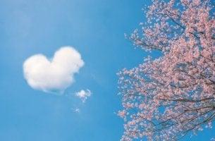 sydänpilvi ja kirsikkapuu