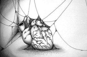 Sydän seittien peitossa