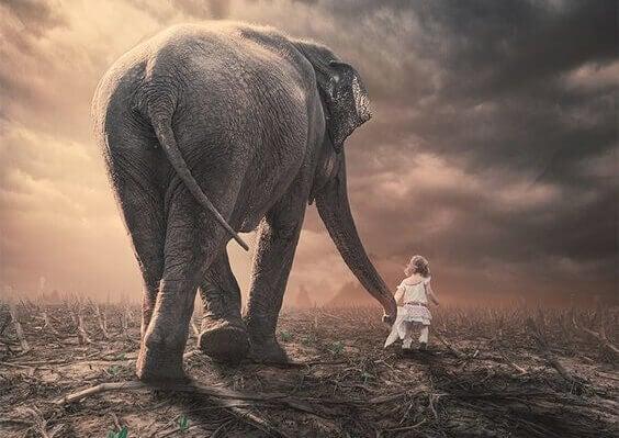norsu ja tyttö