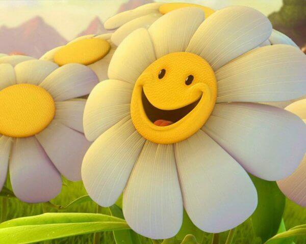 hymyilevä kukka