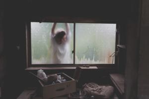 nainen ikkunan toisella puolella