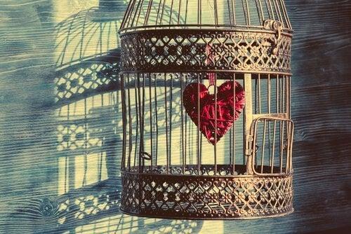 Prinssi ja pääskynen: tarina kiintymyksestä parisuhteessa