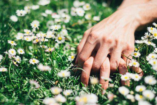 kädet nurmikolla yhteenkietoutuneina