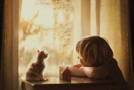 Lapsi ja kissa katsovat ikkunasta