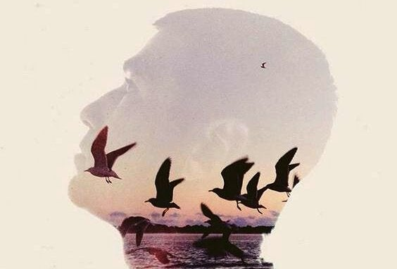 Miehen mieli ja linnut
