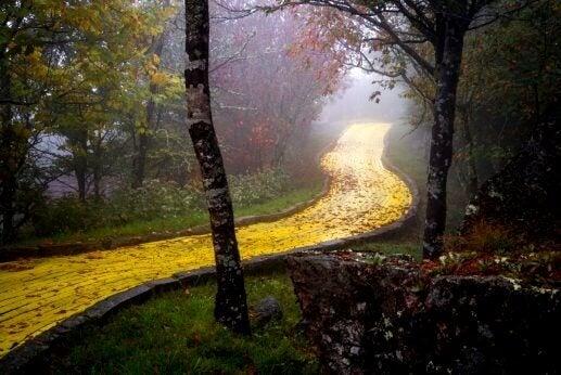 kultainen tie