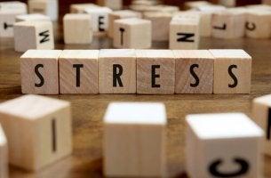 stressi kirjoitettuna palikoin