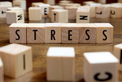 Kuinka stressi vaikuttaa elämäämme?