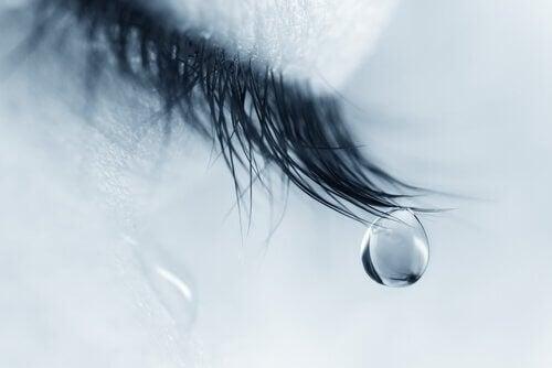 suruprosessi tuo kyyneleitä