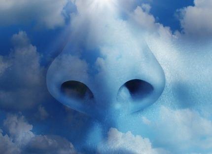 nenä taivaassa