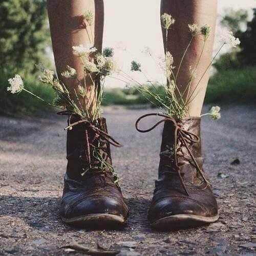 kengissä kasvaa kukkia