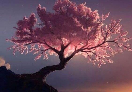 Puhdistavat puut Taon mukaan