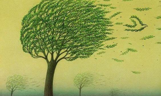 puu kovassa tuulessa