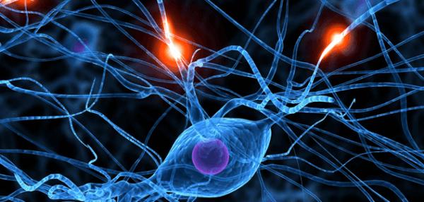 neuronit