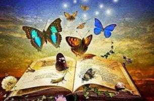 perhoset lentävät kirjan päällä