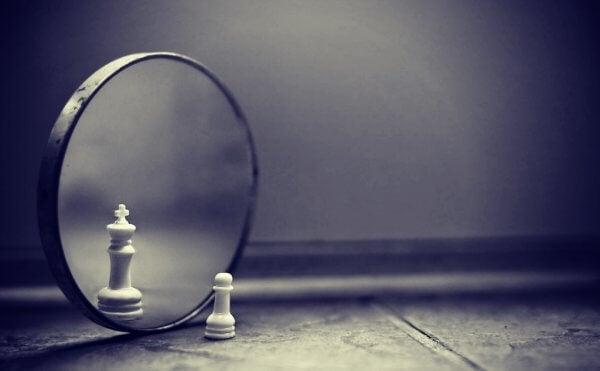 shakkinappula ja peili