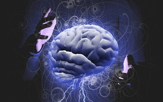 kädet pitelevät aivoja