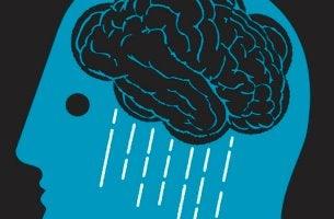 ihmisen aivoista sataa vettä