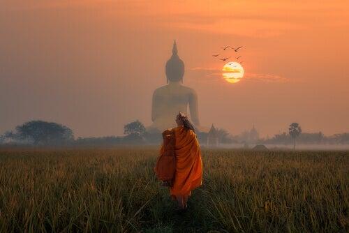 Myrkkynuoli: buddhalainen tarina nykyhetkessä elämisestä