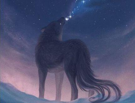 susi imee tähtiä suuhunsa