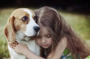 tyttö tuntee koiran empatian