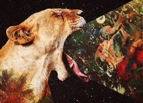 leijonan suusta tulee kummallista tavaraa