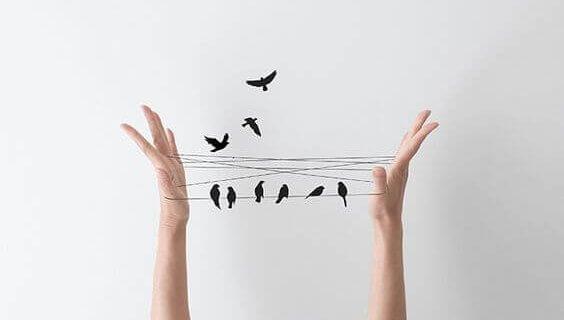 linnut langalla