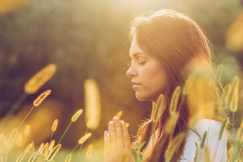 meditointia viljapellossa