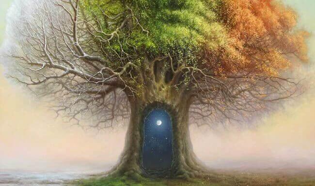 puussa on ovi avaruuteen