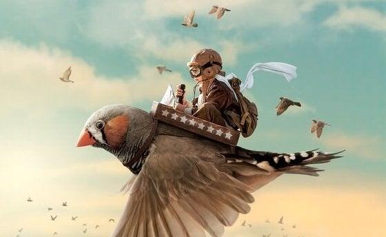 poika lentää pikkulinnun selässä