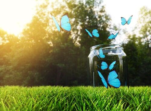 Onnellisuuspullo: miten se tehdään ja miksi se toimii