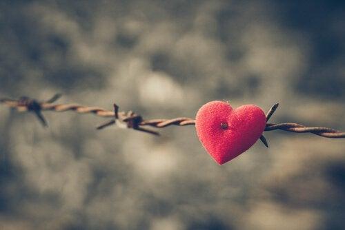 sydän piikkilanka-aidassa