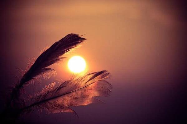 Auringonlasku ja sulat