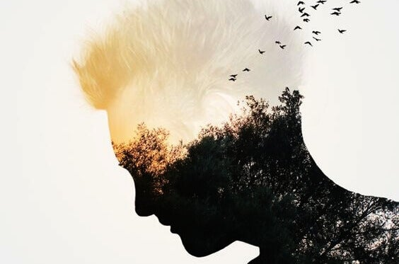 miehen päässä on puu