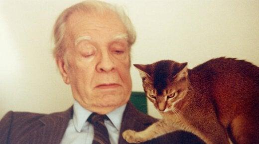 Jorge Luis Borges ja kissa